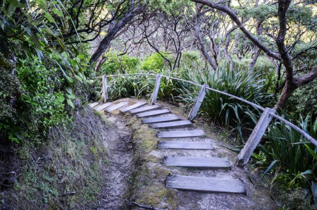 eastcape-escalier