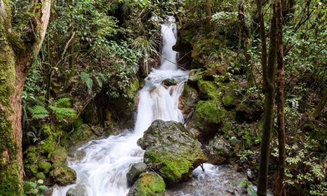 cascade-tongariro