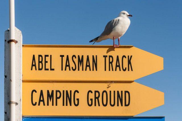abel-tasman-hut-camping