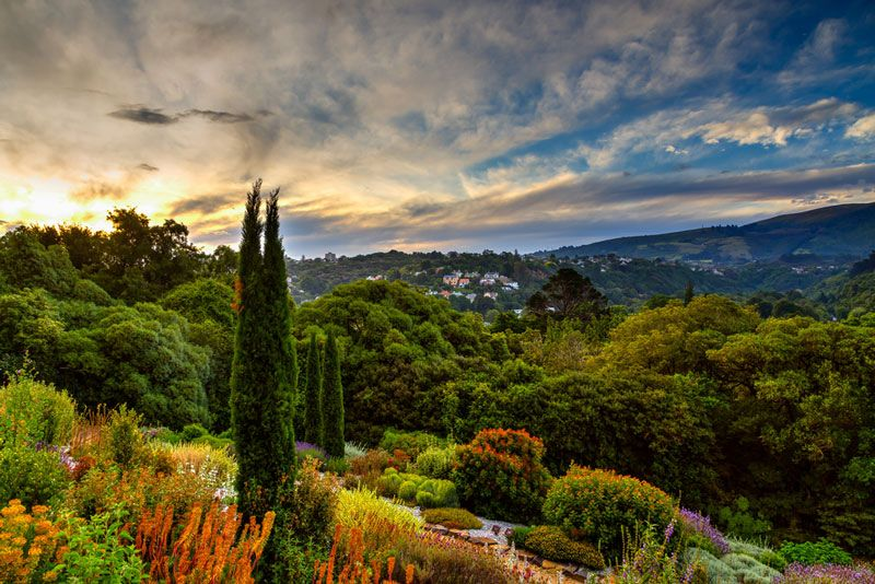 botanic-garden-dunedin