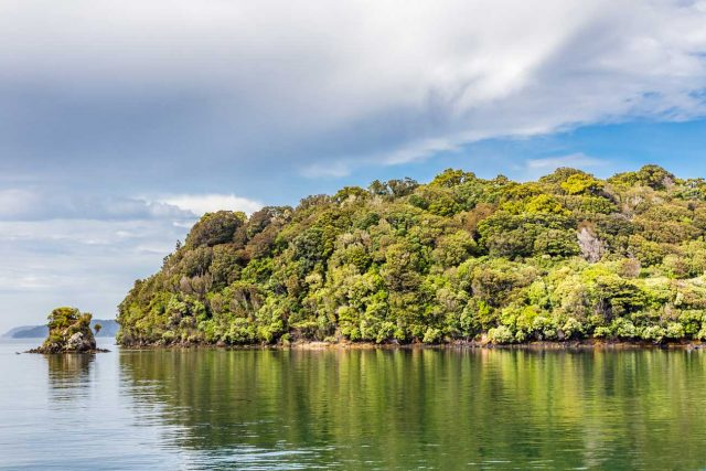 Stewart-Island-2