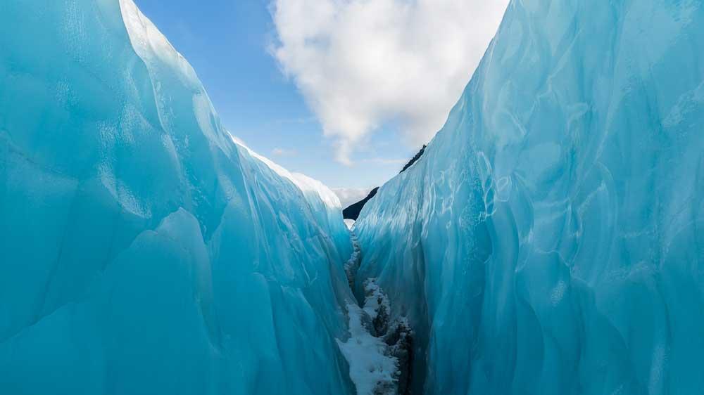 fox-glacier-glace