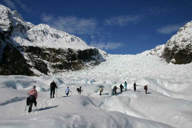 fox-glacier-group