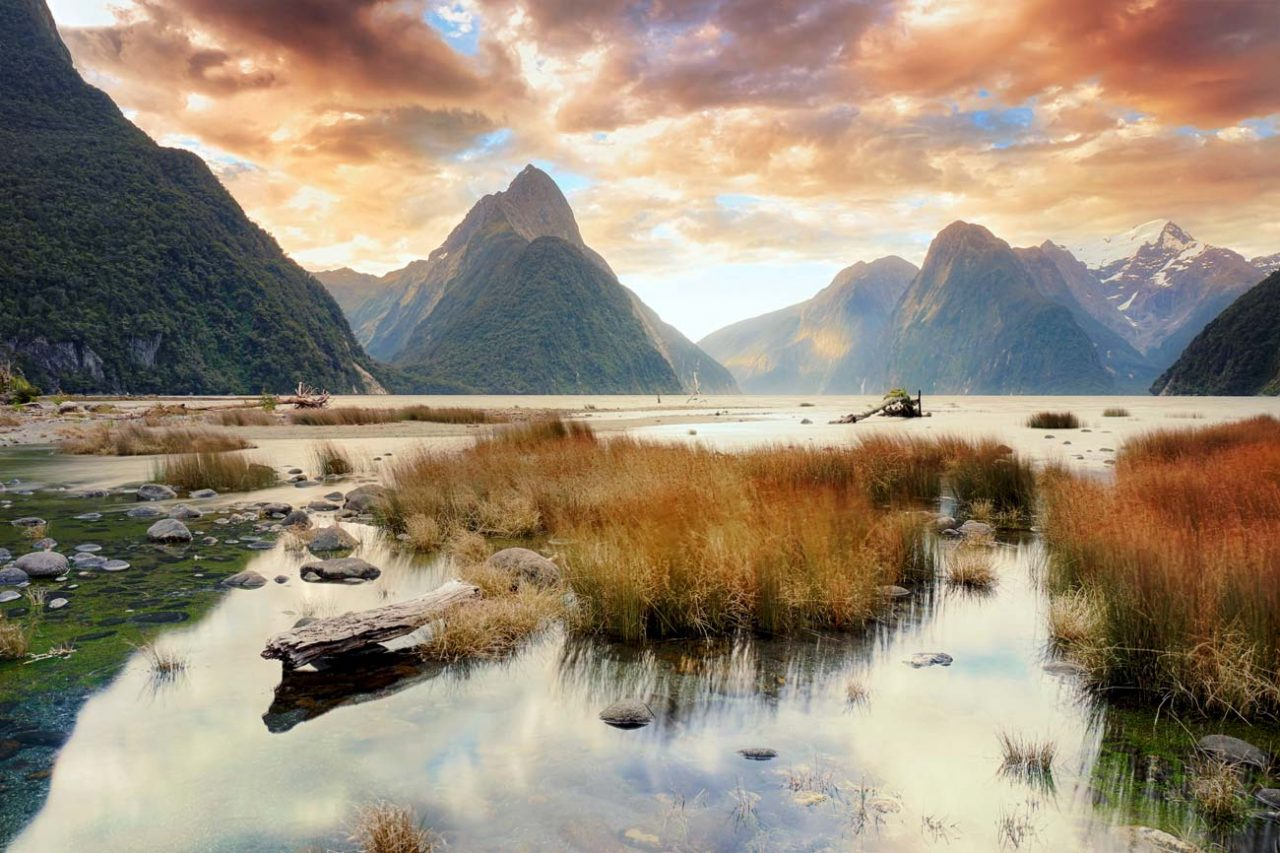 milford-sound-article-1280x853.jpg