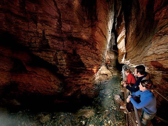 te-anau-glowworm-caves