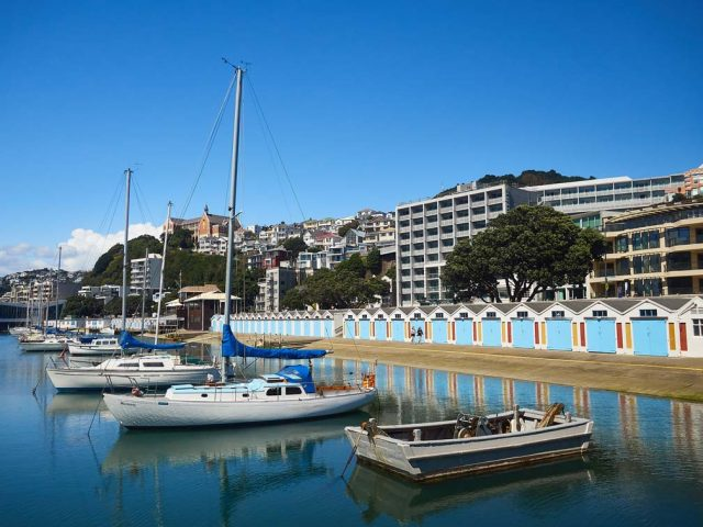 wellington_oriental_bay