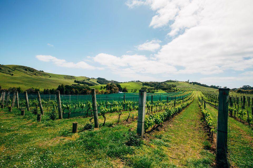 rencontres pour les agriculteurs NZ témoins de Jéhovah sites de rencontre en ligne