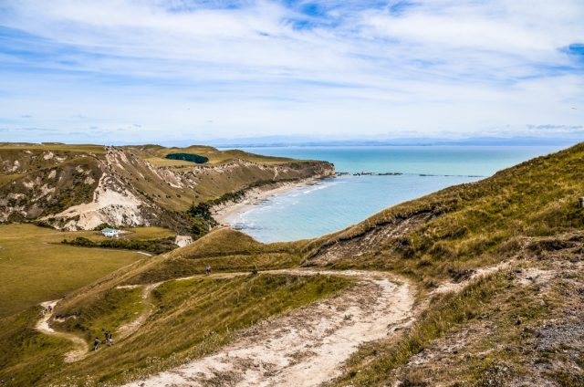 chemin-cape-kidnappers