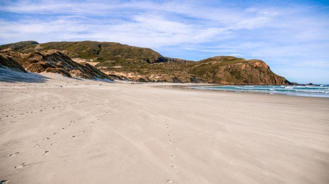 baie-otago-peninsula