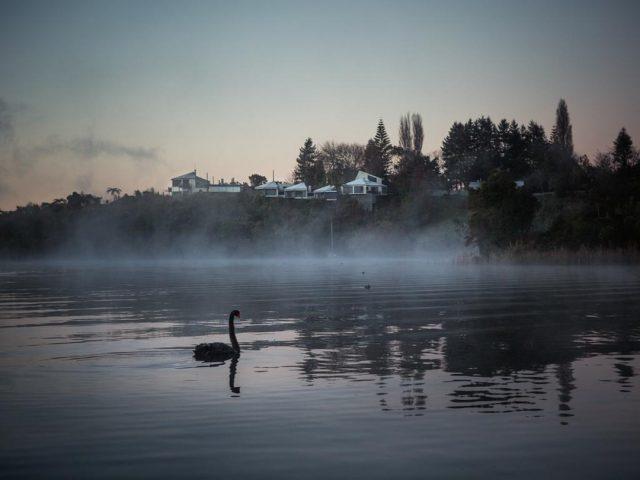 solitaire-lodge-rotorua-lac
