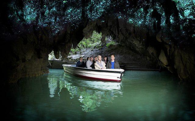 visiter-waitomo-caves